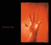 Porcupine Tree XM